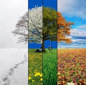 07 Sự thật về thời tiết Canada tháng 1 bạn cần biết?