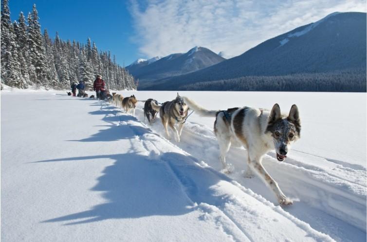 Lanh-tho-Yukon