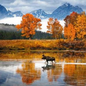 Thời tiết Canada tháng 10 – Lá vàng nhuộm cả một trời thu
