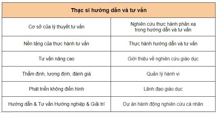 thac-si-huong-dan-va-tu-van
