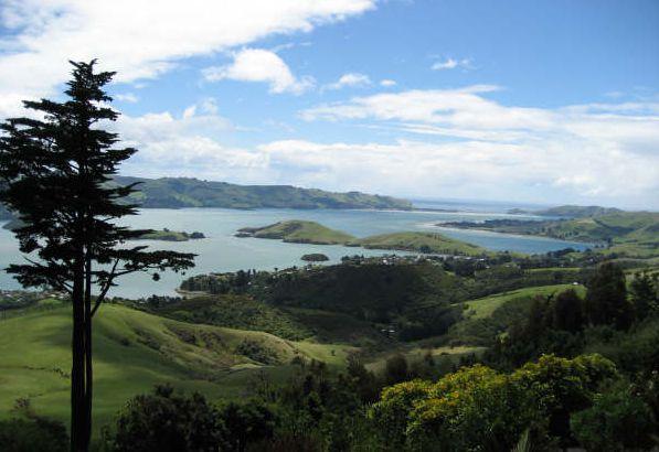 ban-dao-Otago